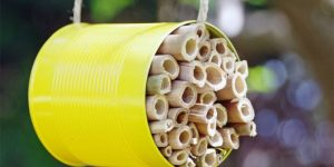 Close Up of Bee House Craft Projects