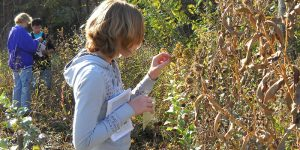 Students exploring nature - Specialized Programs at SRWD