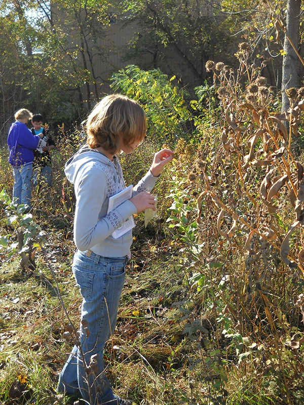 Students exploring nature - Specialized Programs at Sauk River Watershed District